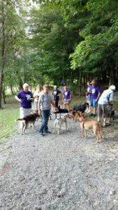 CPR dog walkers 2017