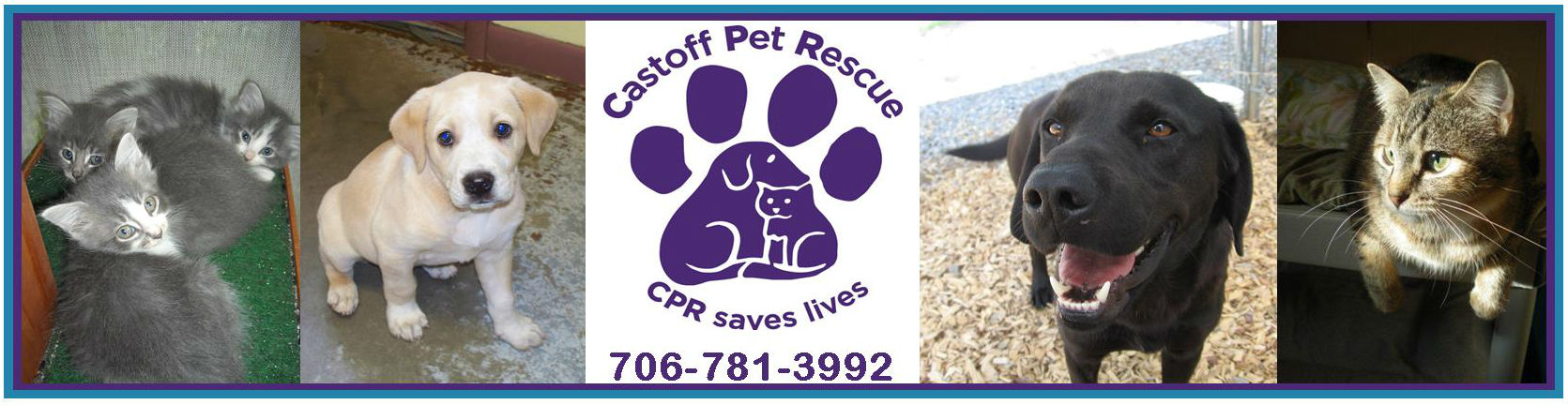 Castoff Pet Rescue