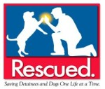 Rescued. Saving Detainees and Dogs One Life at a Time